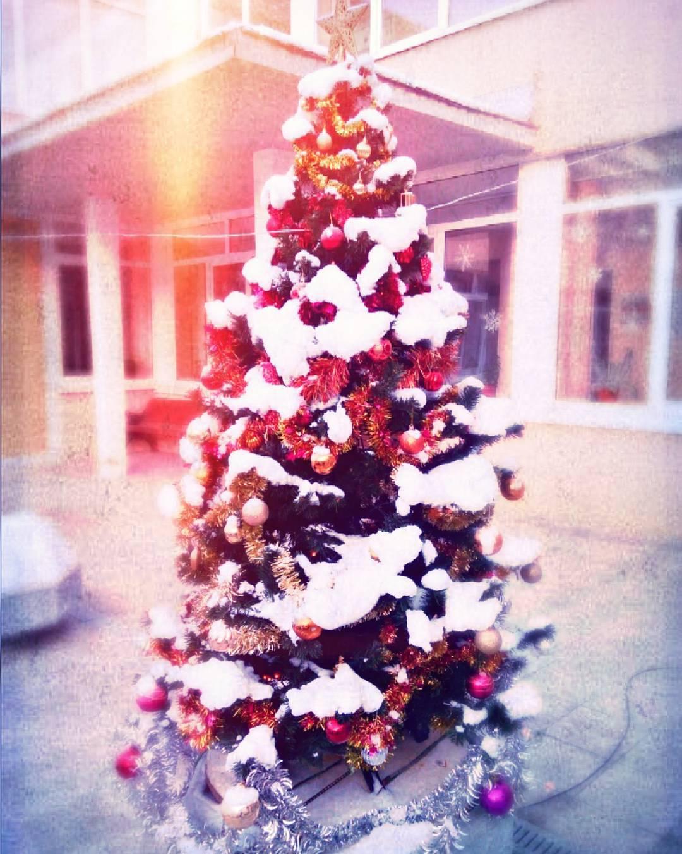 Красивая новогодняя ёлка